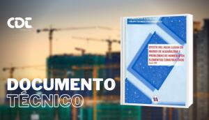 _Efectos del Agua Lluvia en Muros de Albañilería y Problemas de humedad en Elementos Constructivos