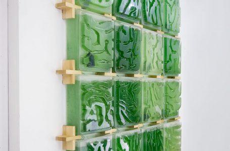 Crean microgranja de algas para absorber CO2 de los hogares
